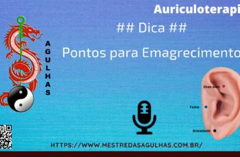 Auriculoterapia: Pontos para o Emagrecimento
